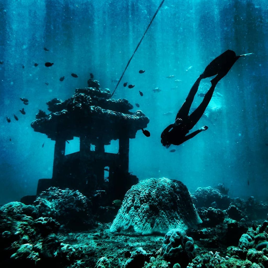 3 Types of Diving on Labuan Bajo Tour