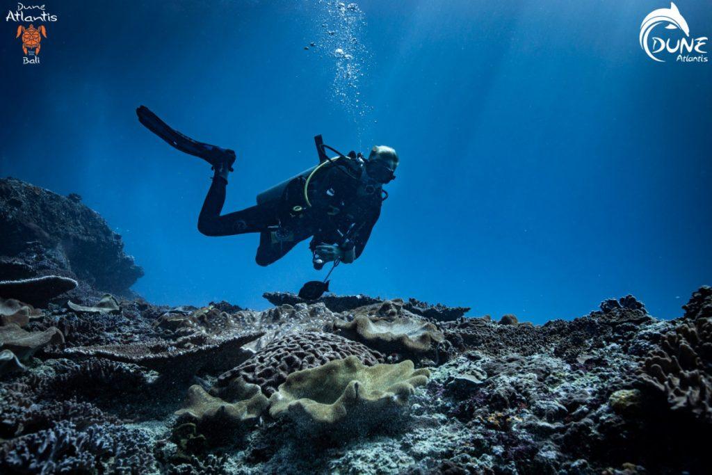 Taste the Scuba Diving Life in Bali Indonesia